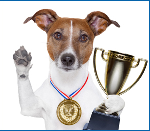 trophy_dog